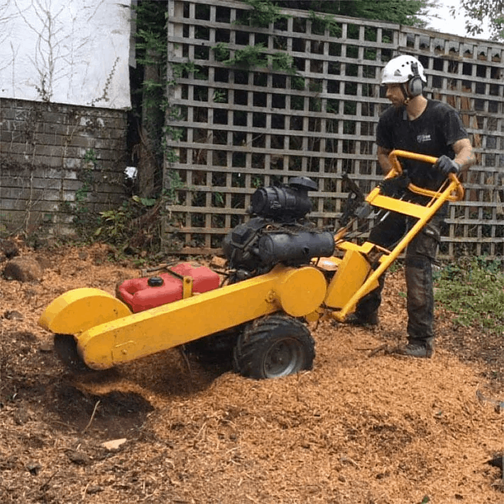 stump removal cardiff